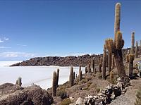 Salar Tour: March-April 2015